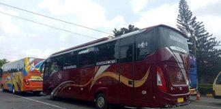 Sewa Bus Brebes
