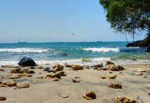 Wisata Pantai Di Cilacap