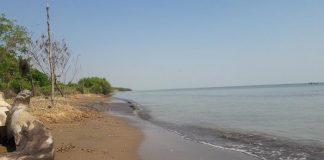 Wisata Pantai Di Demak