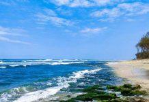 Wisata Pantai Di Tasikmalaya
