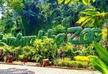 Kebun BInatang Gembira Loka Zoo Jogja
