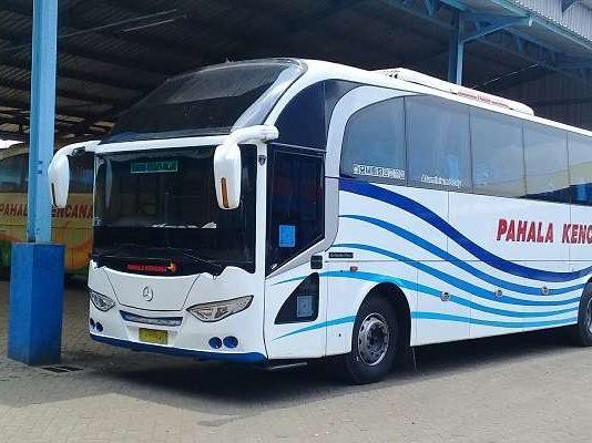 Daftar Harga Tiket Bus Surabaya