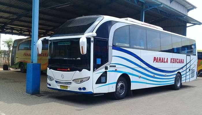 Daftar PO Bus Terlengkap & Harga Tiket Bus Dari Surabaya   Sanjaya Tour