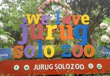 Taman Satwa Taru Jurug Surakarta (Jurug Solo Zoo)