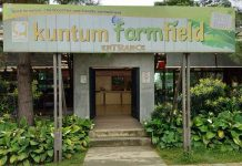 Tempat Wisata Kuntum Farmfield